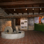 Sala museo Museo Zagarise