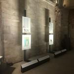 Foto 10 - mostra-De Arte Venandi-Federico II - Castel del Monte