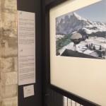 Foto 23 - mostra-De Arte Venandi-Federico II - Bari