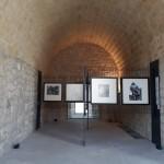Foto 32 - mostra-De Arte Venandi-Federico II - Trani
