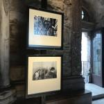 Foto 8 - mostra-De Arte Venandi-Federico II - Castel del Monte
